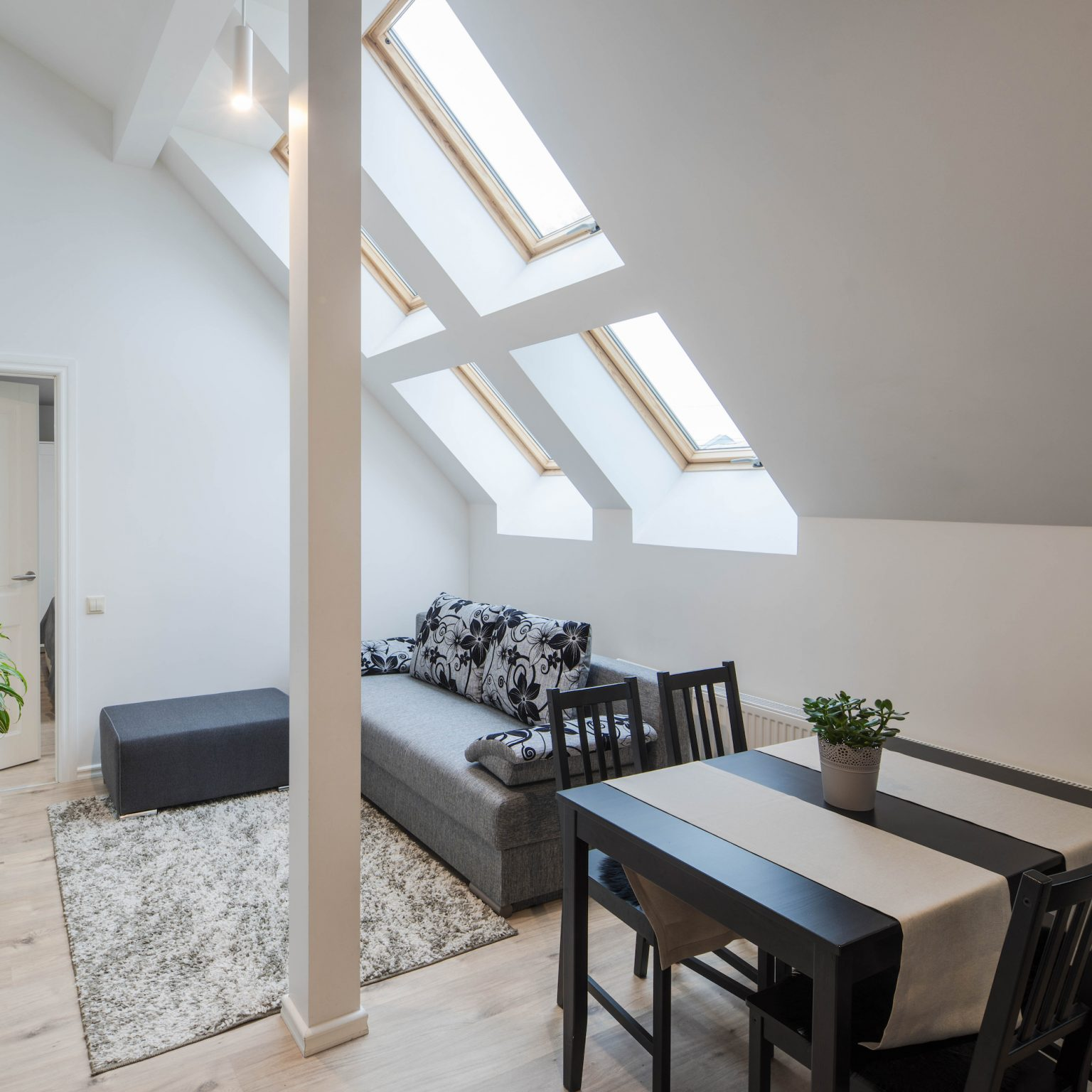 sloping roof with glass rooflights